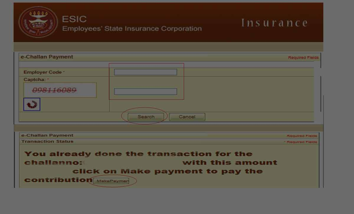 ESI Online Payment
